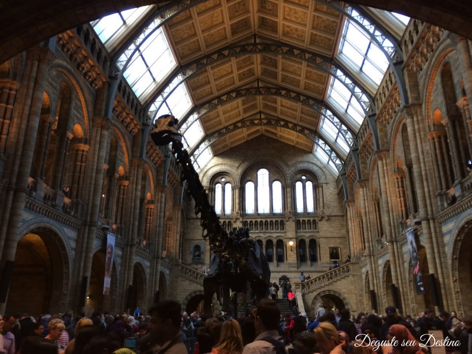 Museu Natural History Museum.