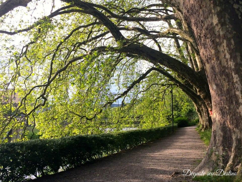 Lindo parque que achamos em Zurique ao passear pela cidade.
